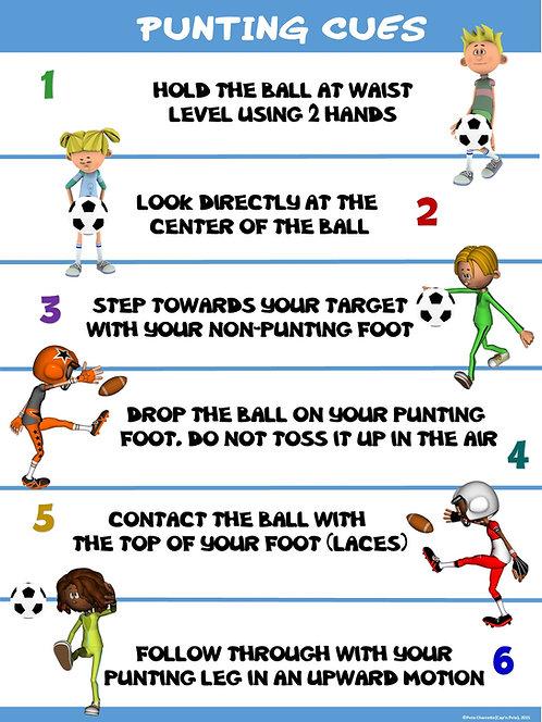 PE Poster: Punting Cues