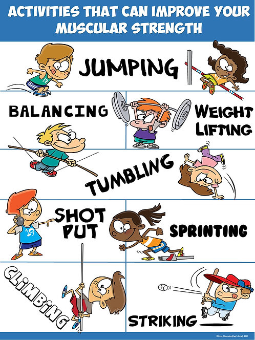 PE Poster: Activities that can improve your Muscular Strength