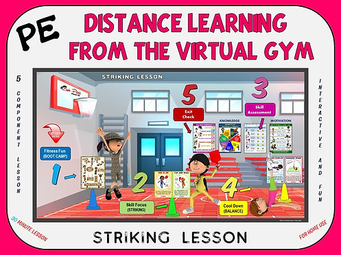 PE Distance Learning from the Virtual Gym- Striking Lesson