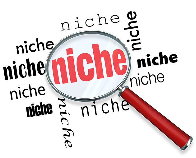 """Identifying Your Niche and Loving What You Do"""" by Jason Steele"""