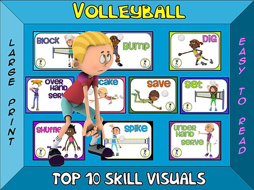 Volleyball- Top 10 Skill Visuals- Simple Large Print Design
