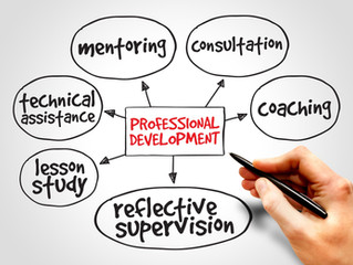 The Importance of Professional Development by Charles Silberman