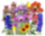 bouquet-clipart-wildflower-bouquet-8.jpg