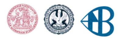 logo Bulovka.png