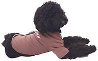 basic_long_sleeve_t_shirts_roi.jpg