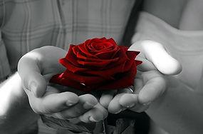 FlowersInHand.jpg