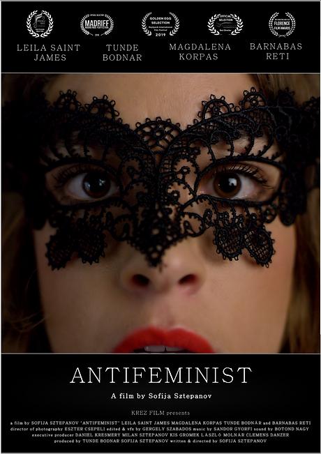 Antifeminist Poster