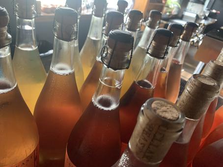 Wine 101: How to Taste