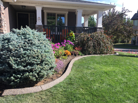 Concrete Curbing For Defining Outdoor Spaces