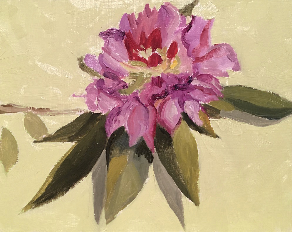 Rhododendron, oil, 8x10