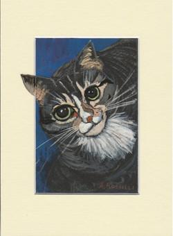 Cat Nip, gouache, 3x5