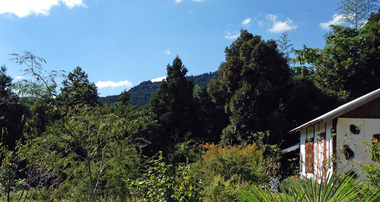 アルコスの庭