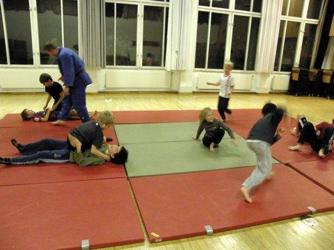 Judo Klaus 2011