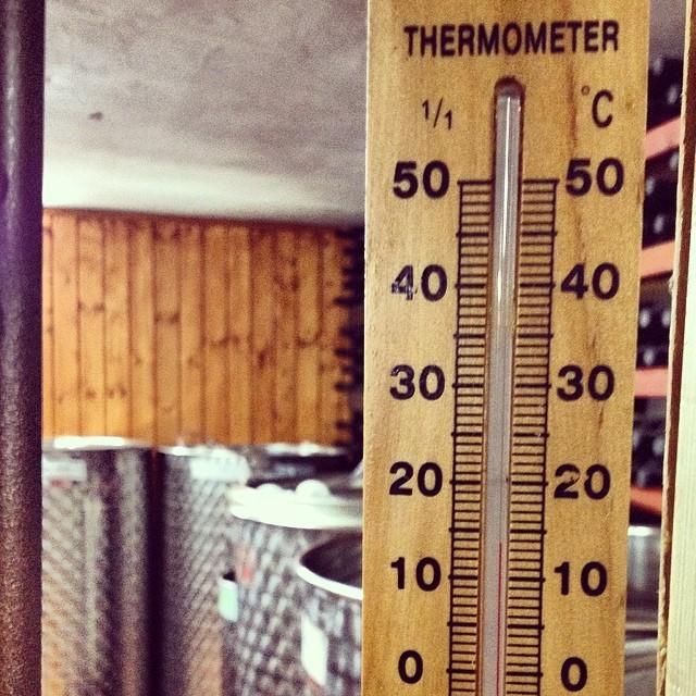 מד טמפרטורה