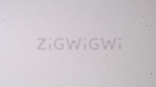 logo_zigwigwi_after_effect.00_00_09_14.S