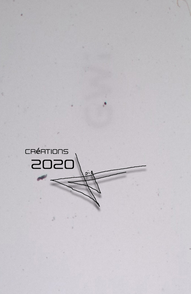 creation-2020.jpg