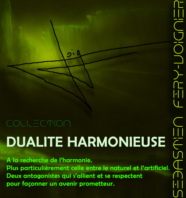 présentation-dualite-harmonieuse.jpg