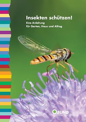 csm_insekten_schuetzen_eine_anleitung_57