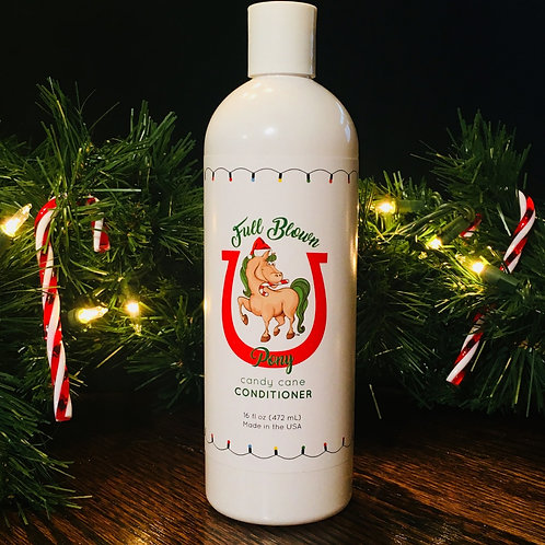 Winter Holiday Conditioner