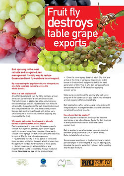 QFly Table Grapes Fact Sheet.jpg