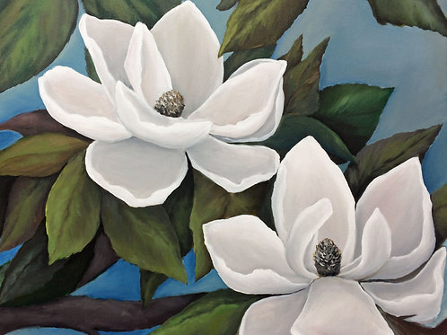 Two Magnolia Blooms