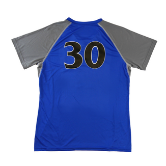 Valley Viking Volleyball Jersey - Back