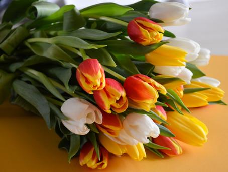 Sveiciens 8. martā!