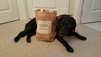 Rural luxury cabins dog friendly
