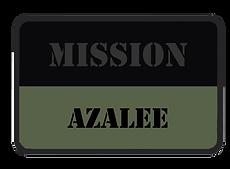 AZALEE.png