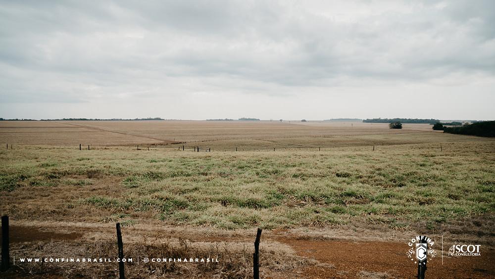 fazenda brejinho no confina brasil