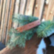 Dog Collar Tooled.jpg