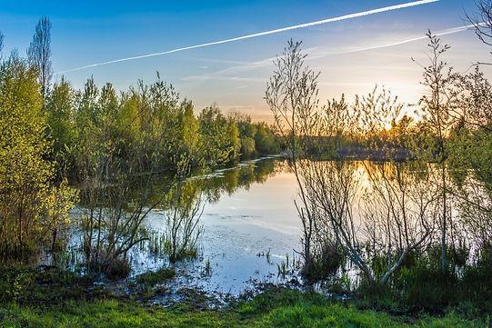 Landschaft in Schortens - Werner Graalfs
