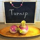 Turnip,かぶ,パース