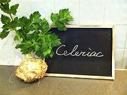 Celeriac,セルリアック