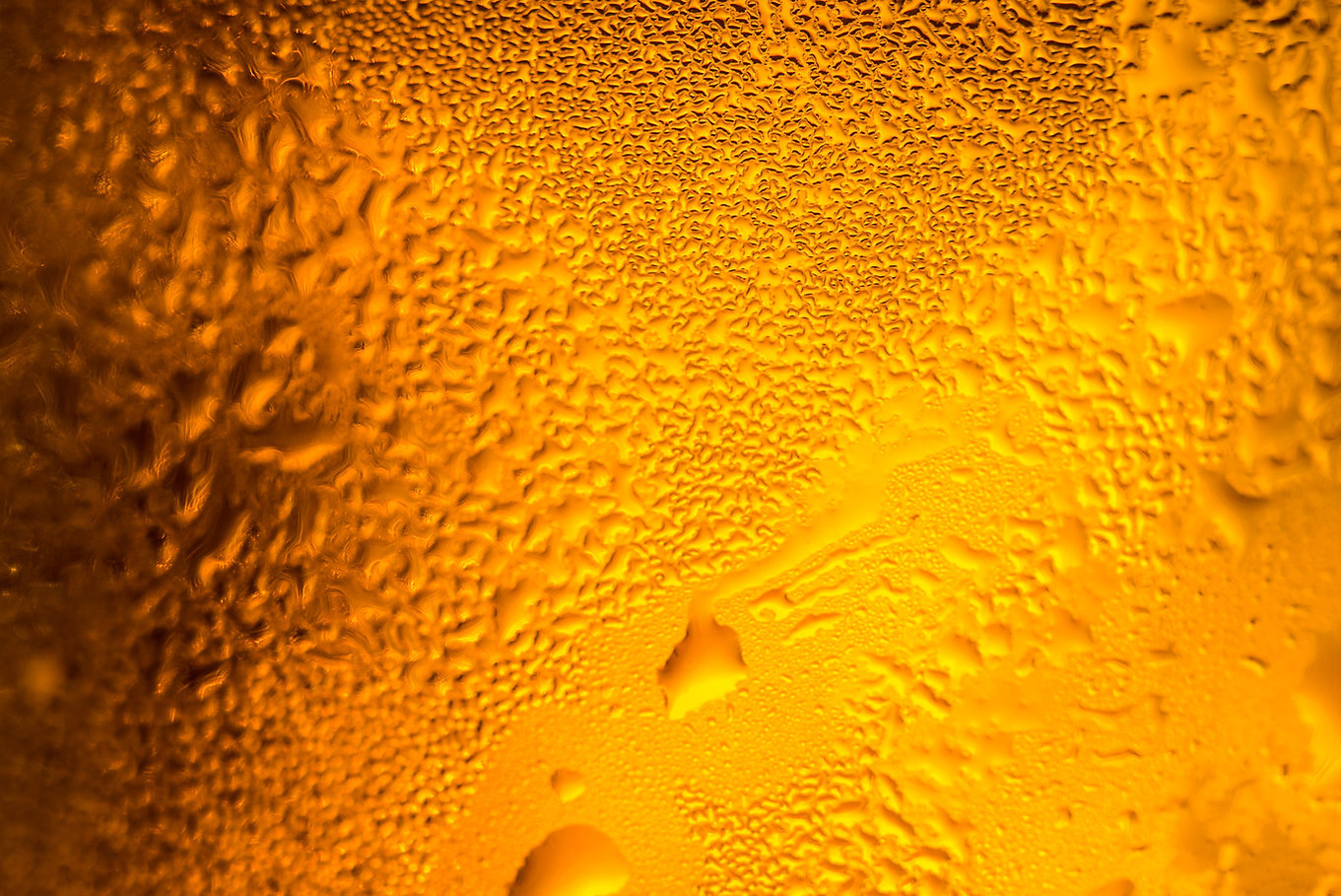 cold-beer-in-a-glass-with-water-drops-up