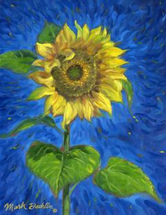 Vincent's Memory