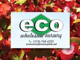 Grower Partner Spotlight: Eco Wholesale Nursery
