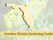October Florida Gardening Guide