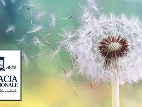 La difesa dalle allergie parte dall'interno
