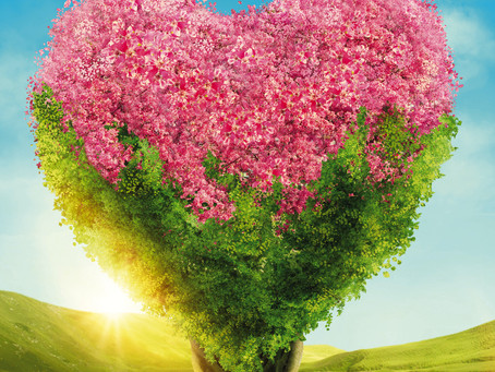 I fiori delle emozioni