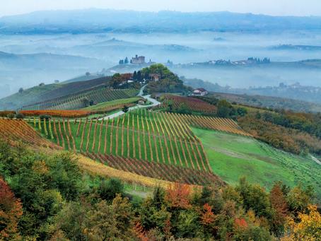In giro per il mondo: Langhe, Roero e Monferrato