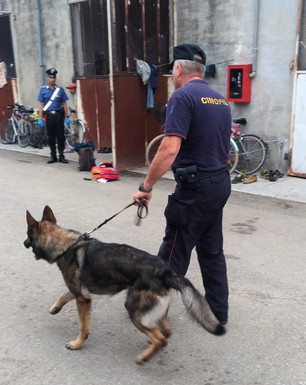 Blitz antidroga dei Carabinieri di Saluzzo al Foro Boario e al Pas