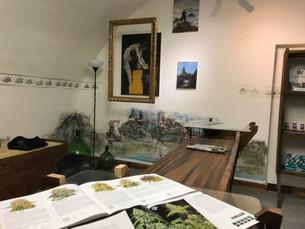A Saluzzo apre Natural Green: come far conoscere benefici e utilizzi della canapa