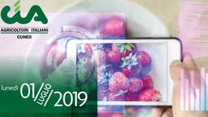 """""""La frutta che verrà"""": convegno a Saluzzo il 1° luglio per le emergenze del comparto frutt"""