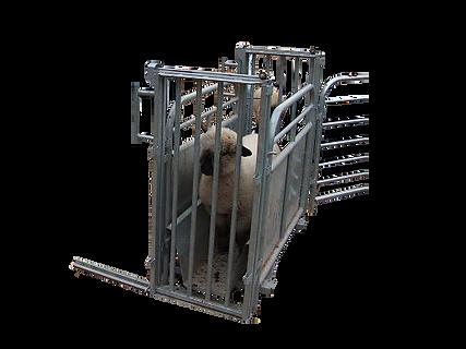 pesaje de hacienda, barras pesadoras, barras de pesaje