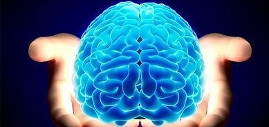 brain3-min.jpg