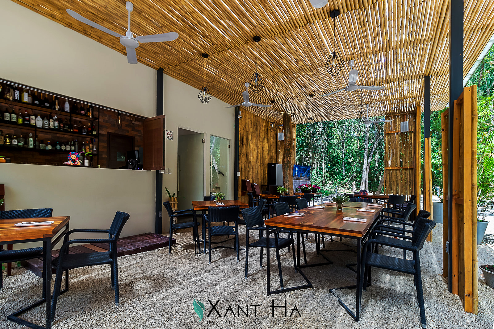 Xant-ha-10_Logo