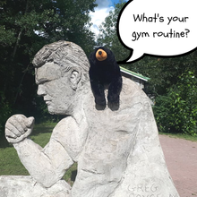 What's your gym routine.png