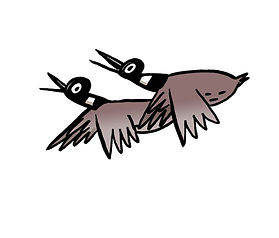 bd574317-36e6-42d2-8681-0286e16b4561_canadian+geese.jfif