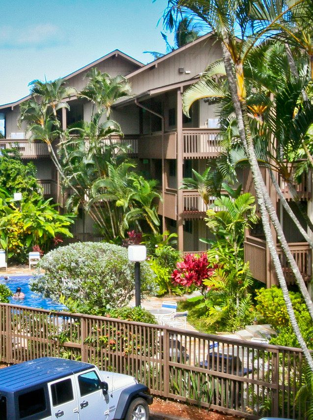 Lush, tropical landscaping